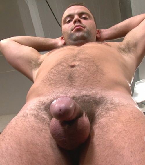 Handsome Jock Luke Auditions for Porn 500x567 True Stories of Adult Film